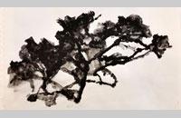 arbre, encre, 2015, 30x40cm