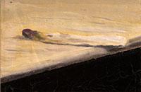 L\'asperge d\'Holbein, acrylique sur toile, 2014, 30 x 30 cm