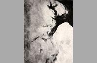 Pit, gravure, 50 x 65 cm, 2013