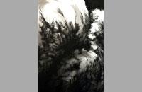MOSES I, encre de chine sur papier, 57 x 76,5 cm, 2015