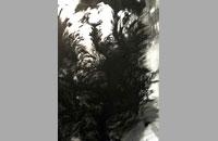 MOSE II, encre de chine sur papier, 57 x 76,5 cm, 2015