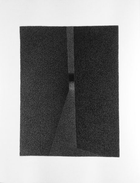 Wolf D4,  65x50 cm, 2015