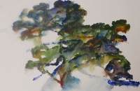 Grand chêne dansant, acrylique sur papier
