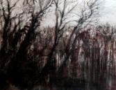 """""""Les grands arbres"""", encre et fusain, 50x70cm, 2017"""