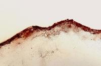 Lanzarotte 3, ligne de crête,55 x 46 cm