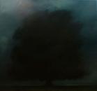 Arbre de nuit, huile sur toile, 100 x 100 cm, 2017