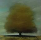 Arbre de jour, huile sur toile, 100 x 100 cm, 2017