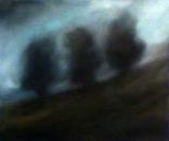 Trois arbres, huile sur toile, 45 x 54 cm, 2017