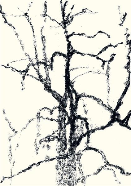 Félix Studinka - Chestnut Journal p.134, fusain sur papier, 29,7 x 21 cm