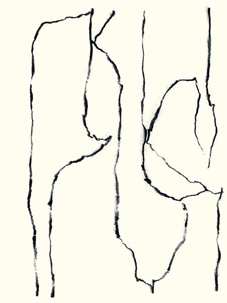 Félix Studinka - Chestnut Journal p.67, fusain sur papier, 29,7 x 21 cm