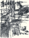 Félix Studinka - Chestnut Journal p.102, fusain sur papier, 29,7 x 21 cm