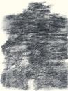 Félix Studinka - Chestnut Journal p.156, fusain sur papier, 29,7 x 21 cm
