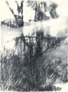 Félix Studinka - Chestnut Journal p.193, fusain sur papier, 29,7 x 21 cm