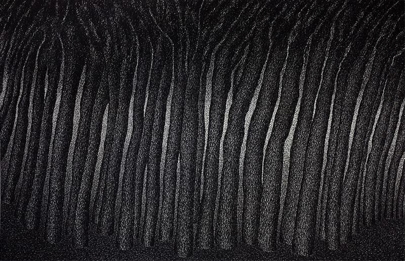 Laurent WOLF - Dessins noirs / Leporellos - Exposition du 2 au 30 novembre à la galerie LIGNE 13